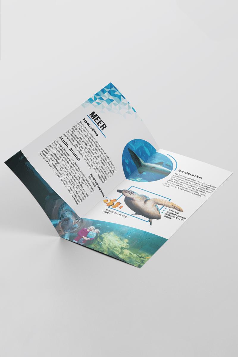Neue Flyer, Google Ad Grafiken oder eine Broschüre? Erfahrene Werbegrafiker setzen Ihre Vorstellungen um